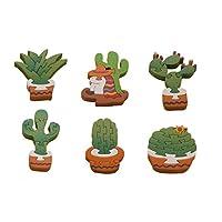 Set Rompecabezas de Cactus