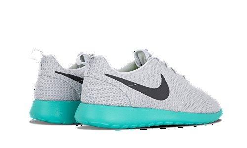 Nike Scarpe Da Ginnastica Mens Run Roshe Pure Platinum / Antracite-clyps