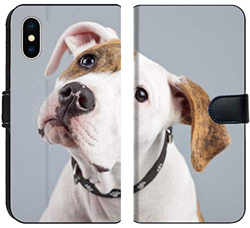 Liili Premium iPhone X Flip Micro Fabric Wallet Case Puppy American Bulldog White with red Spots Isolated Against Grey Background Studio Portrait Image ID 21625