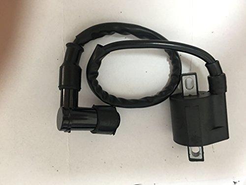 Buy polaris 500 ignition coil