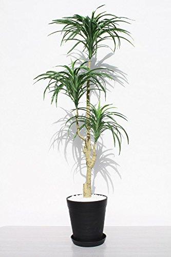 インテリアグリーン人工観葉植物新ユッカ120黒鉢、光触媒品受け皿付き B0798B3DQR