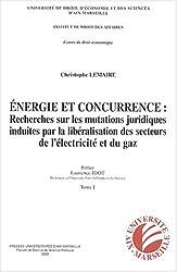 Energie et concurrence : recherches sur les mutations juridiques induites par la libéralisation des secteurs de l'éléctricité et du gaz naturel : 2 volumes
