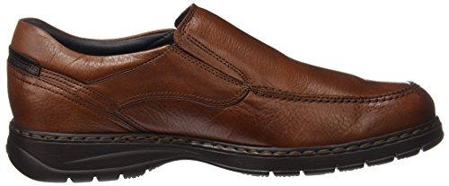 Marrón Retail Cordones ES Fluchos Zapatos Spain Hombre Libano 9144 sin c8x4wAqv1d