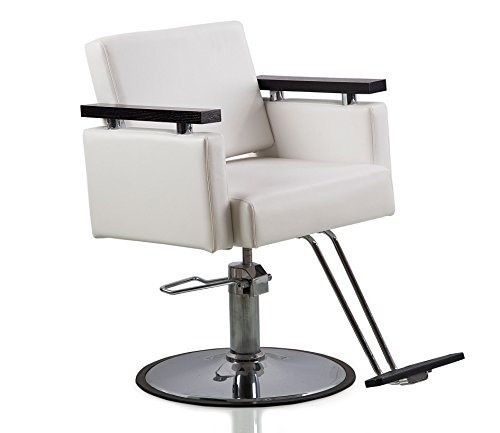 Hair Styling Chair - 4