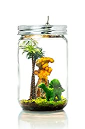 Marmelada Dino Town Story In a Jar Night Light Baby Nursery Room Bedtime LED Lamp