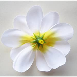 "(12) White Hawaiian Plumeria Frangipani Silk Flower Heads - 3"" - Artificial Flowers Head Fabric Floral Supplies Wholesale Lot for Wedding Flowers Accessories Make Bridal Hair Clips Headbands Dress 4"