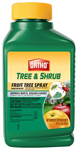 ortho-tree-shrub-fruit-tree-spray-16-ounce