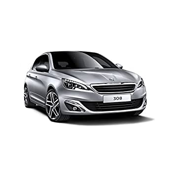 Zesfor Pack Bombillas LED Peugeot 308 II (2014-2017): Amazon.es: Coche y moto