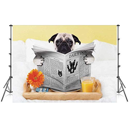 - Pug Stylish Backdrop,Pug Reading Daily Dog Breakfast in Bed Sunday Family Fun Comedic Image for Photography Festival Decoration,59''W x 39''H