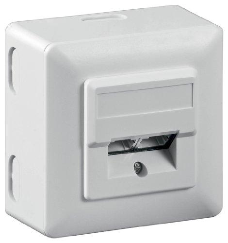 Wentronic 50943 flat panel wall mount - flat panel wall mounts (White)