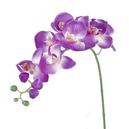 UEETEK Simulation Butterfly Orchid Artificial Flower Plant Home Decoration (Purple) (Flower Plastic Purple)