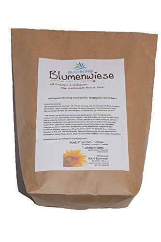 Blumenwiese Englisch blumenwiese mit kräutern wildblumen 500gr blumenmischung
