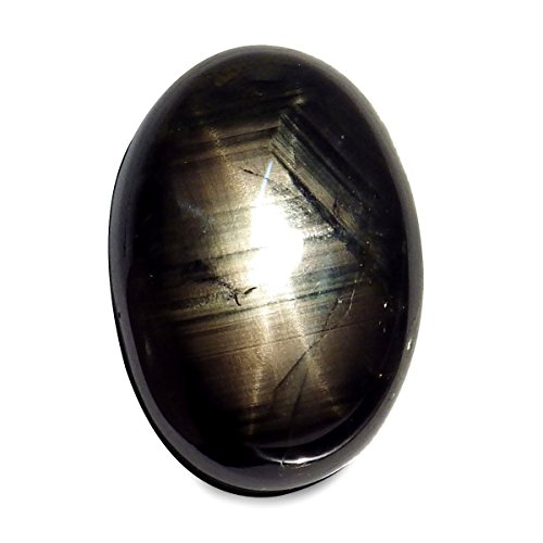 18.11 Ct. Big Natural Oval Cabochon Black Star Sapphire Thailand 6 Rays Loose Gemstone