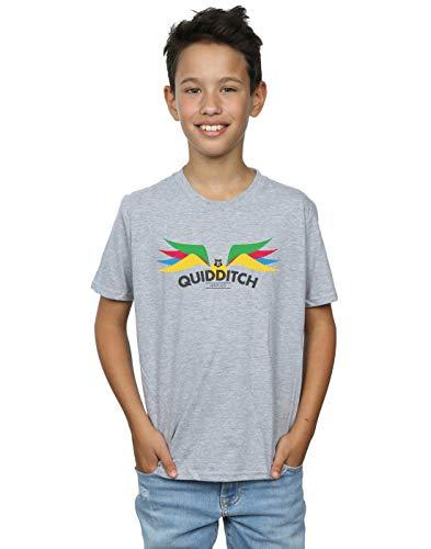 Harry Wings Snitch Potter grigia shirt sportiva di T Boy pwq4BRFxn