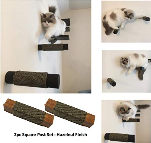 Purrfectly Catastic Floating Cat Post Steps Set (2pc) | Handcrafted Solid Hardwood Climbing Posts | Space-Saving Wall-Mounted cat Furniture | Choice of Shape and Wood Finish (Hazelnut, Square) -