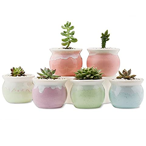 Mkono Set of 6 Ceramic Succulents Pots Small Plants Planters for Indoor Planting, 2 1/2 Inches