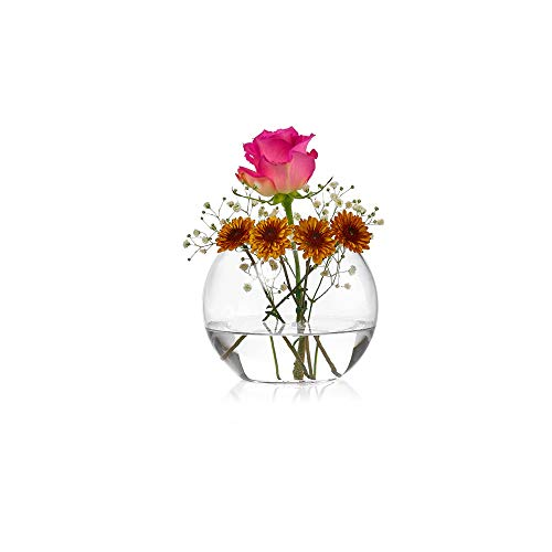 PARNOO Glass Bowl Round Vase - 6 inch Diameter - Clear Glass Bubble Terrarium/Rose Bowl - Used in Floral Arraignments, Wedding Centerpieces, Flower Decoration (Flower Round Bowls Glass)