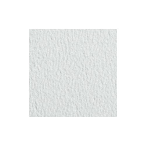 Pastel Premier Sanded Pastel Paper - Sheets - Fine Grit - White 26''x40'' 5 Sheet Pack by Handbook Paper