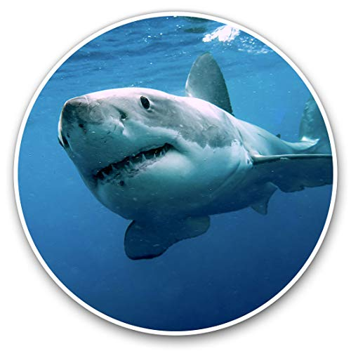Awesome Vinyl Stickers (Set of 2) 10cm – Great White Shark Underwater Fun Decals for Laptops,Tablets,Luggage,Scrap…