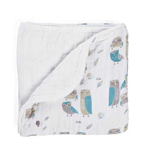 aden anais Organic Dream Blanket