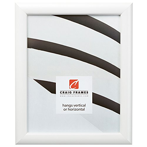 Craig Frames FW177WH 16 by 22-Inch Picture Frame, Smooth Finish, 1-Inch Wide, Shiny White