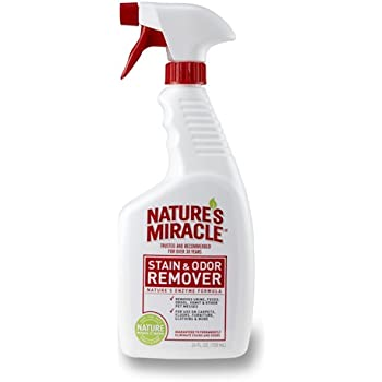 Amazon Com Nature S Miracle Stain Amp Odor Remover 24