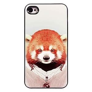 YULIN Raccoon Design Aluminum Hard Case for iPhone 5/5S