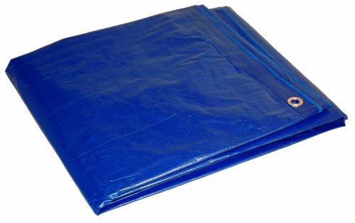 (16x20 Multi-Purpose Blue Economy Poly Tarp)
