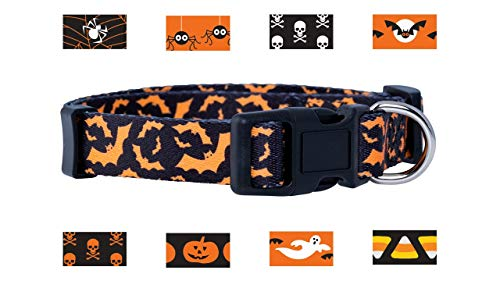 Native Pup Halloween Dog Collar (Medium, Orange Bats) -