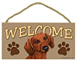 SJT ENTERPRISES, INC. Dachshund (Brown) Welcome Sign 5' x 10' MDF Wood Plaque (SJT61532)