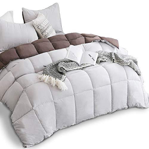 (KASENTEX All Season Down Alternative Quilted Comforter Set with Sham(s) -Reversible Ultra Soft Duvet Insert Hypoallergenic Machine Washable, Twin, Silver Cloud/Chocolate)