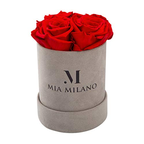 Mia Milano Infinity Roses Box | 4 Eternity Preserved Rose (3 Years Durable) Velvet Flowerbox for Delivery