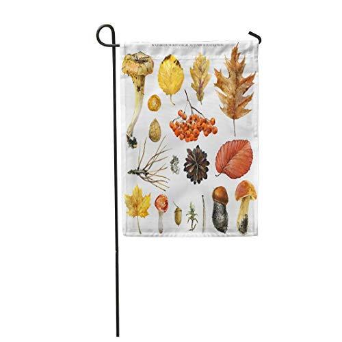 (Tarolo Decoration Flag Aspen Watercolor Botanical Autumn Chanterelle Pine Cone Rowan Acorn Leaves Amanita Botany Thick Fabric Double Sided Home Garden Flag 12