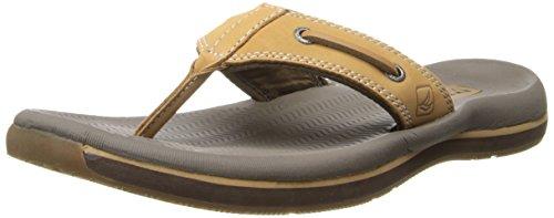 057dd904fb0e9 Sperry Men s Santa Cruz Thong Sandals Tan - Import It All
