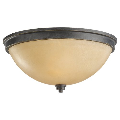 (Sea Gull Lighting 75520-845 Parkfield Two-Light Ceiling Flush Mount Hanging Modern Light Fixture, Flemish Bronze)
