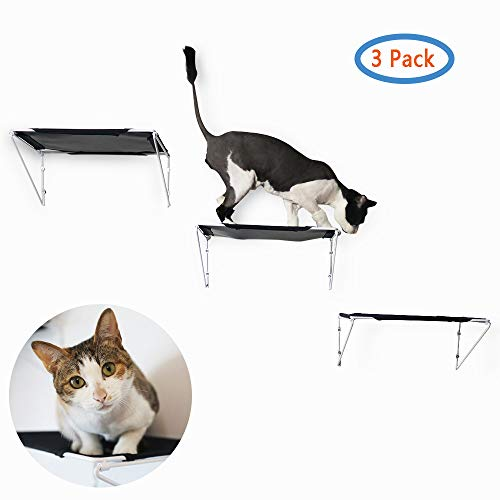 (RayCC Cat Shelves Cat Steps Cat Perch Cat Cloud Cat Bed Wall-Mounted Cat Furniture Great for Cat Climbing(Set of 3,Large))