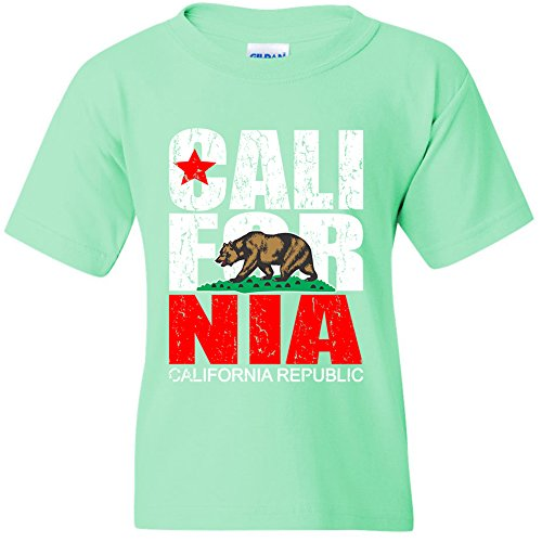 Amazing Items California Republic Distressed Vintage State Flag Unisex Youth's T-Shirt, Medium, Mint