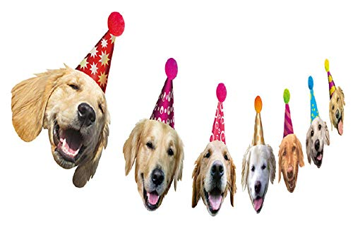 Silvima Golden Retriever Birthday Garland, Dog Face Portrait Birthday Banner, Bday Bunting Decoration