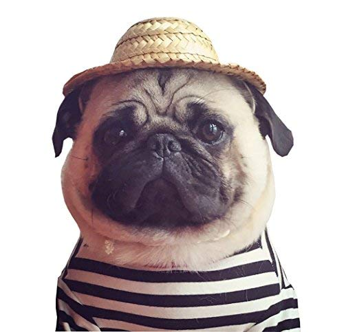 Moolecole Dog Pet Straw Hat Cute Costume Hat For French Bulldog And Pug Christmas Holiday Funny Costume 14CM