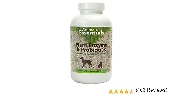 Animal Essentials Planta de enzimas y probióticos para Perros y Gatos 300 gram: Amazon.es: Productos para mascotas