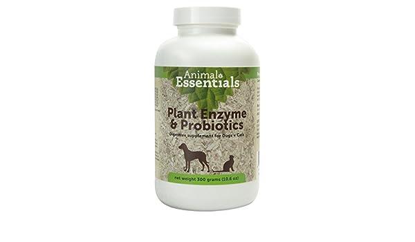 Animal Essentials Planta de enzimas y probióticos para Perros y ...