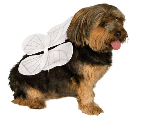 Dog Costumes Angel (Rubies Costume Company Pet Angel Wings, Medium/Large)