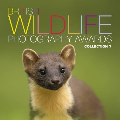 British Wildlife Photography Awards: Collection 7 pdf