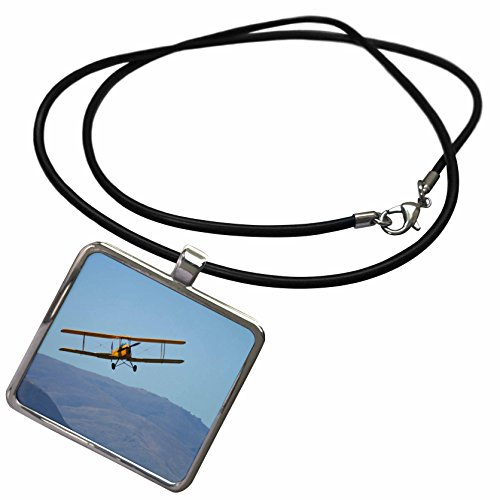 3dRose Danita Delimont - Airshows - De Havilland DH 82A Tiger Moth Biplane, Airshow - AU02 DWA7178 - David Wall - Necklace with Rectangle Pendant (ncl_133900_1)