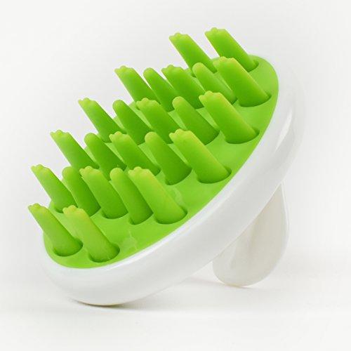 Zyllion Scalp Massager Dandruff Brush for Shampoo and Hair, ZMA-12 (Green)