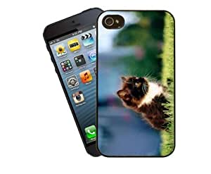Eclipse Gift Ideas Cat Phone Case, Design 7 - Cute Black And White Kitten - For Apple iPhone 4 / 4s - Cover