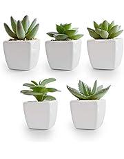 Korvea Set of 5 Artificial Succulent Plants in Ceramic Pots - Assorted Fake Succulents - Mini Succulent Plants - Small Succulent Plants for Window Sills, Bathrooms, Office Spaces, and More