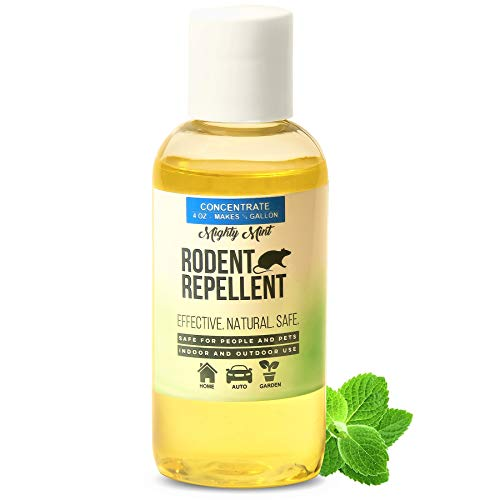 (Mighty Mint 4 oz Peppermint Rodent Repellent Concentrate - Makes 1/2 Gallon - Natural Spray for Rats, Mice, and More - Non Toxic)