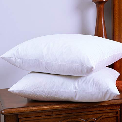 Set Of 40 Cotton Fabric Throw Pillows Insert Down And Feather Magnificent Down And Feather Pillow Inserts
