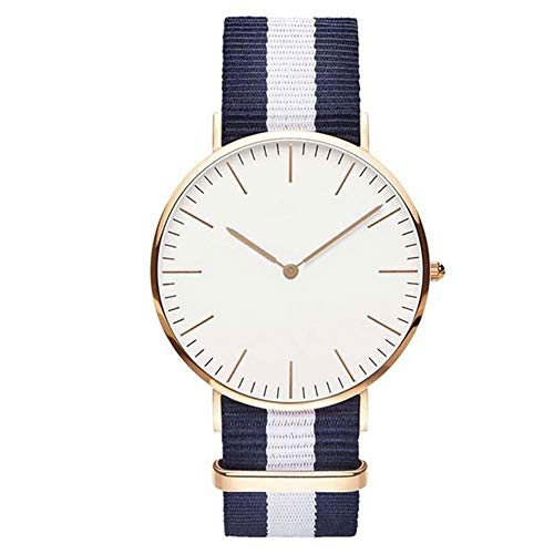ZSLLO Nylon Strap Waterproof Women Watch Top Brand Watches Fashion Casual Station Wrist Watch Silver (Color : C)